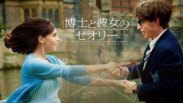 映画「博士と彼女のセオリー」(字幕/吹き替え)の動画をフルで無料視聴する方法!