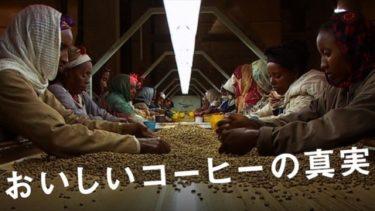 映画「おいしいコーヒーの真実」(字幕/吹き替え)の動画をフルで無料視聴する方法!
