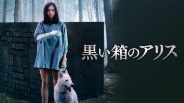 映画「黒い箱のアリス」(字幕/吹き替え)の動画をフルで無料視聴する方法!