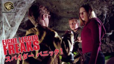 映画「スパイダー パニック!」(字幕/吹き替え)の動画をフルで無料視聴する方法!