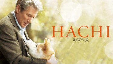 映画「HACHI 約束の犬」(字幕/吹き替え)の動画をフルで無料視聴する方法!