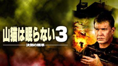 映画「山猫は眠らない3」(字幕/吹き替え)の動画をフルで無料視聴する方法!
